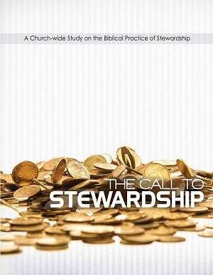 Call to Stewardship (Espanól)